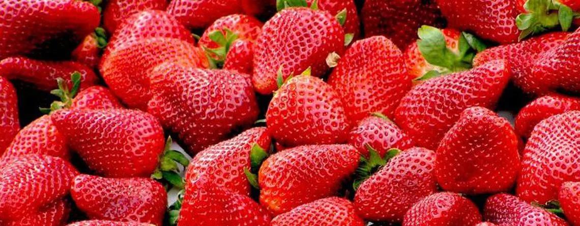 frutas delicadas de verano