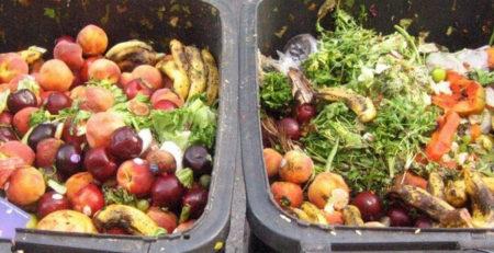 Evita el desperdicio de alimentos en el año de las frutas y hortalizas